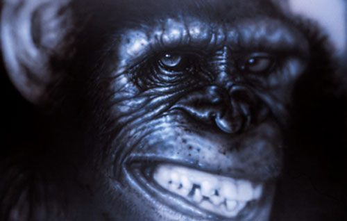 anger-monkey45x65-4K.jpg